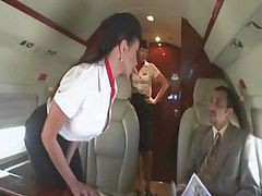 Bus, Stewardess, Orgu bus