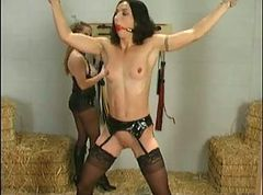 Bdsm, Bondage, Asian public bondage orgasm