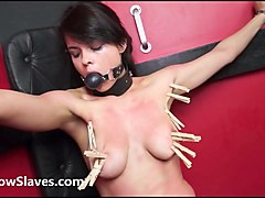 Latina, Lesbian, Lesbian tied up blonde
